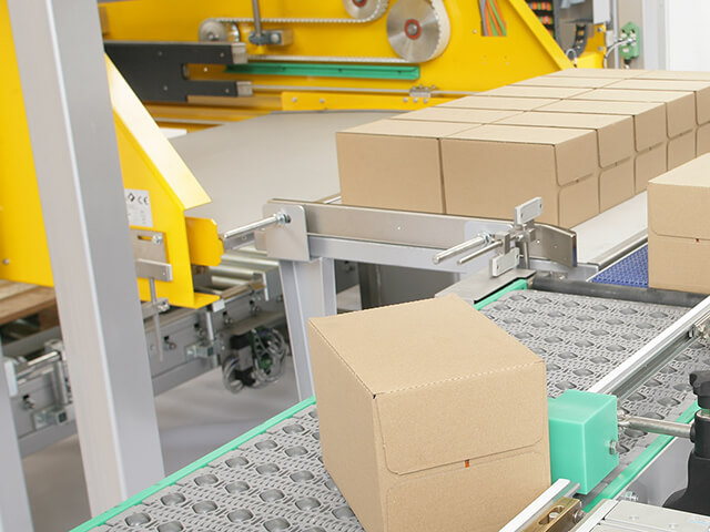Low & High Level Infeed Palletisers