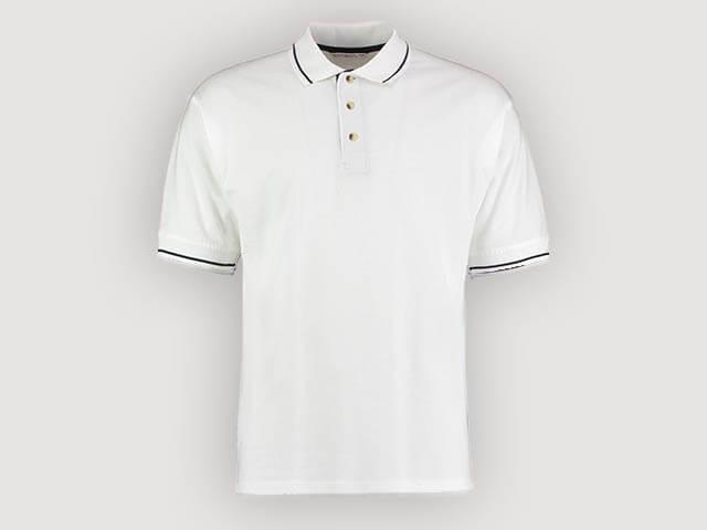 Company Polo Shirts with Logo