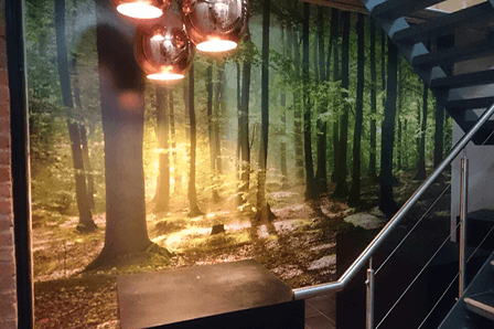 Digital Printed Wall Paper